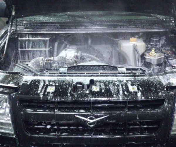 de21aa8s 9601 600x500 - Мойка двигателя без последствий